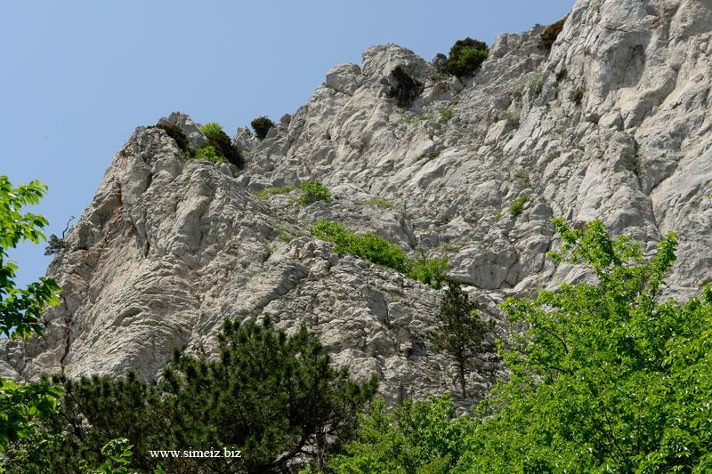 Скалы на Ай-Петри