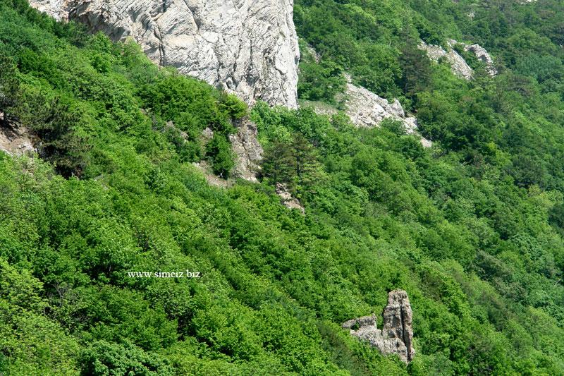 Подножие горы Ай-Петри