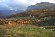 Вид на село Соколиное