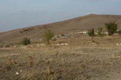 Окрестности Белогорска