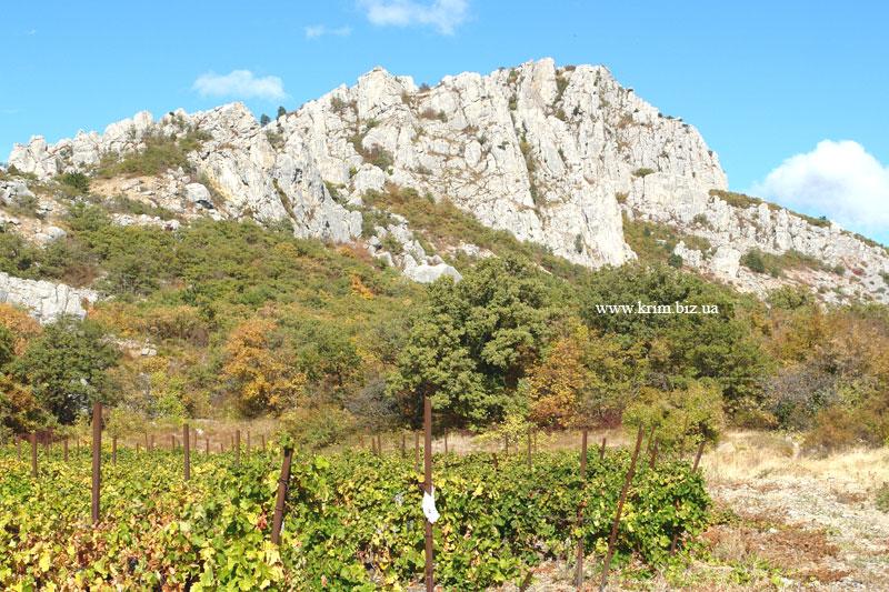 Вид на гору Биюк-Исар от поселка Оползневое