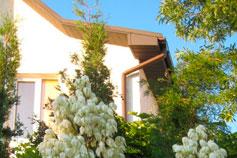 Гостевой дом У моря в Севастополе (мыс Фиолент)