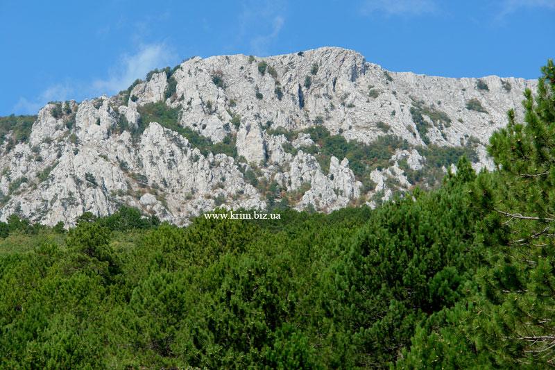 Крым Кацивели горы