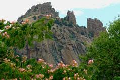 Крым. Карадагский природный заповедник. Горный массив Карагач