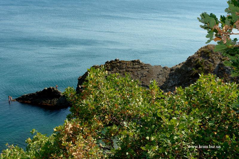 Милас - морской вид