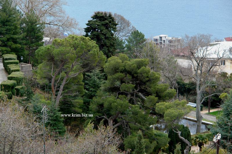 Парк в Юсуповском дворце