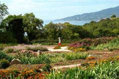 Крым. Никитский ботанический сад