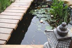 Отель, гостиница Японский сад камней в Новом Свете