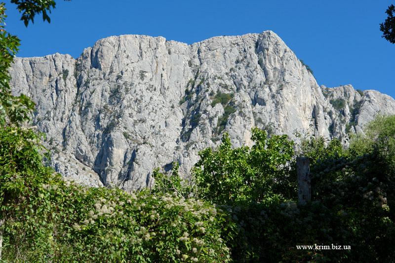 Крым, скалы над Оливой