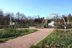 Симферополь. Воронцовский парк, розарий
