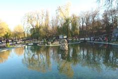 Отражение в пруду