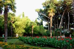 Карасан, парк имения Раевских