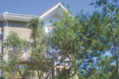 Гостиница Чайка в Ялте