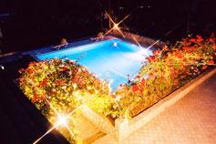 Гостиница отель Спарта в Ялте. Территория